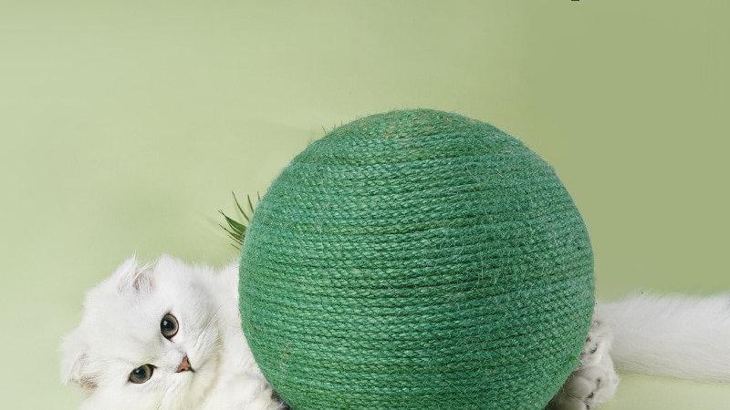 Green Cat Scratching Ball