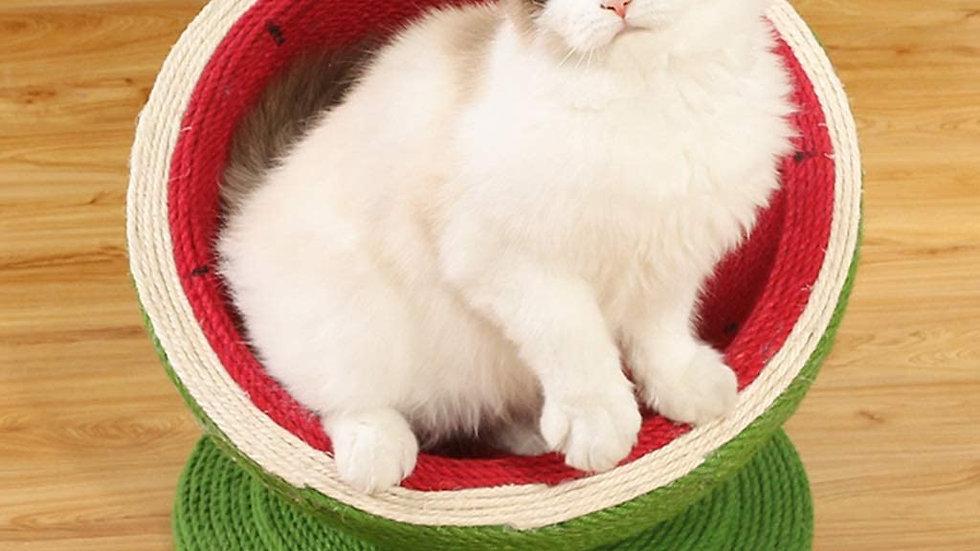 Fruity Cat Scratcher