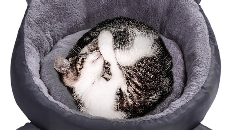 Cute Kitty Bed