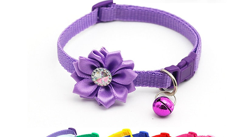 Adjustable Pet Cat Collars