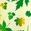 Thumbnail: Zero Waste Beeswax Food Wrap Eco-Friendly Reusable