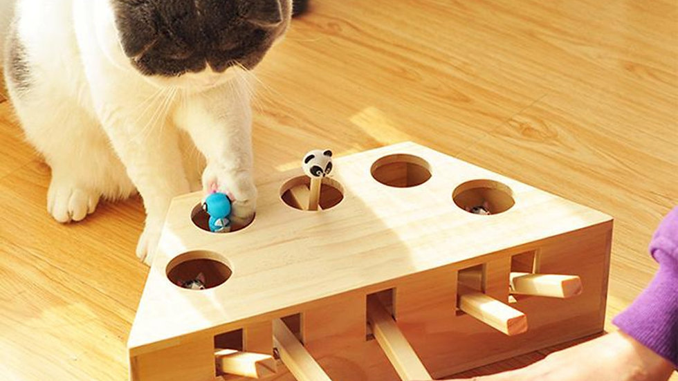 Pet Indoor Wooden Cat Hunt Toy Interactive Holed Mouse  Play Toy