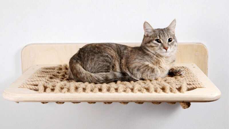 Wall-Mounted Cat Frame