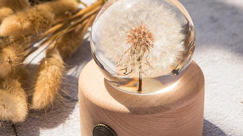 Dandelion Glass Ball