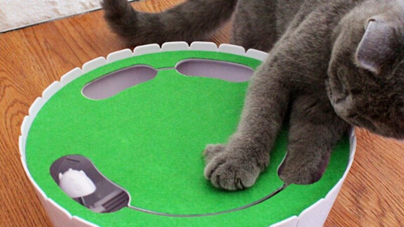 Interactive Cat Chasing Toy