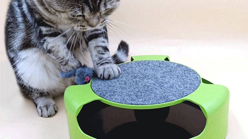 Intelligence Spinning Mouse Pet Toy