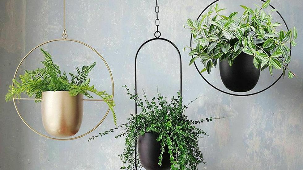 Iron Hanging Basket
