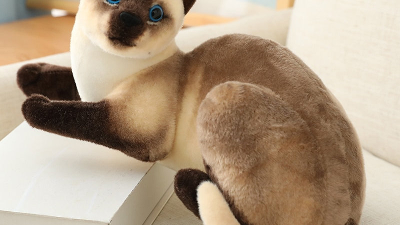 Cute Plush Cat Doll