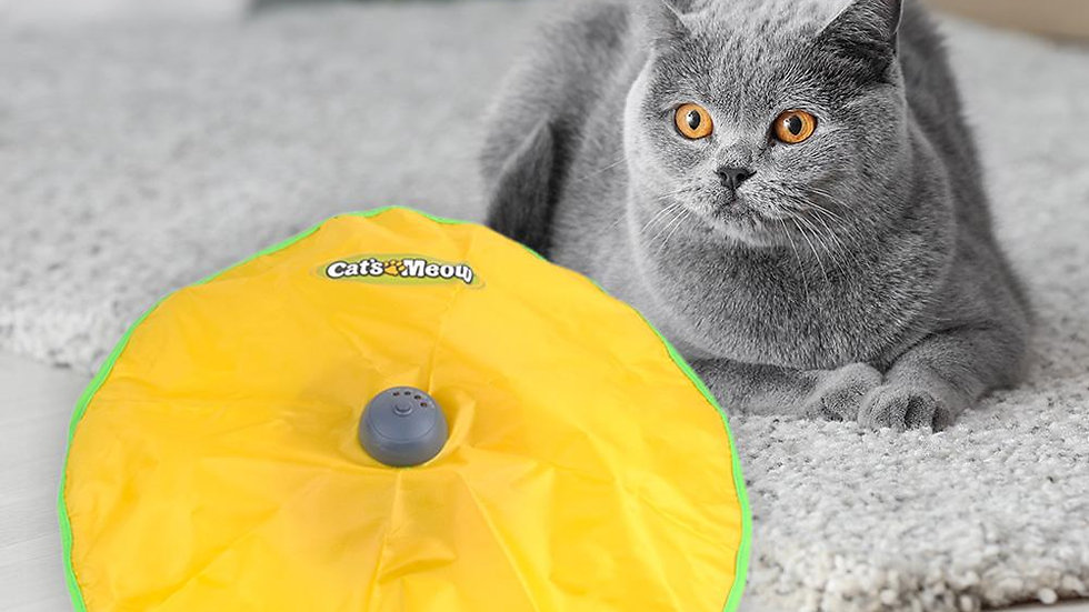 Interactive Electric Cat Toy Turntable