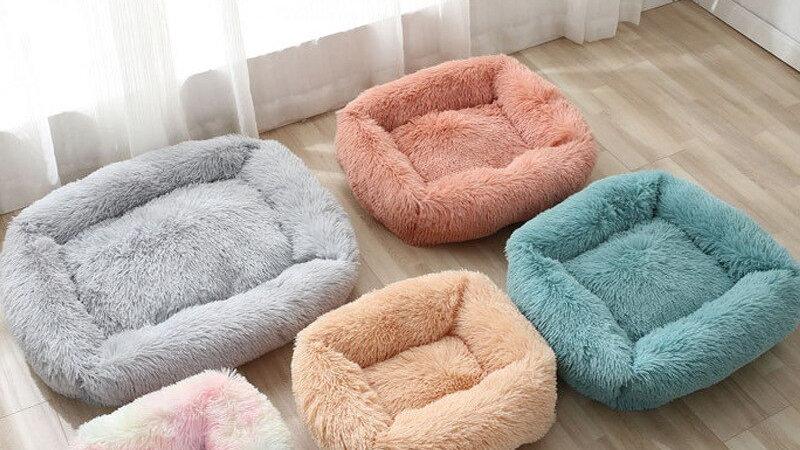 Plush Kitty Bed
