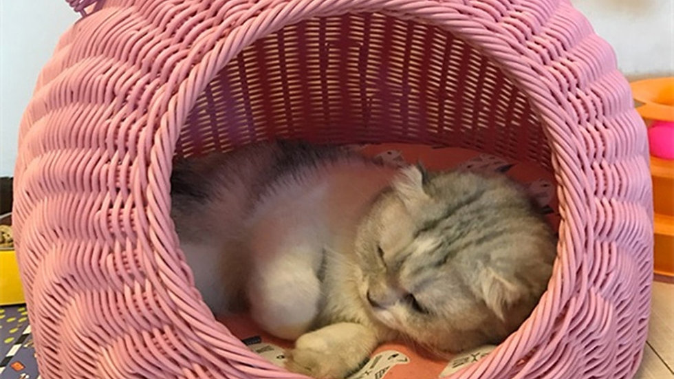 Pet Woven Cave Bed