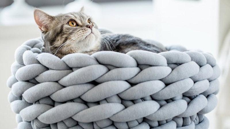 Hand-Woven Coarse Pet Nest Cat Bed