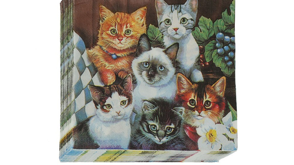 20pcs Cat Napkins