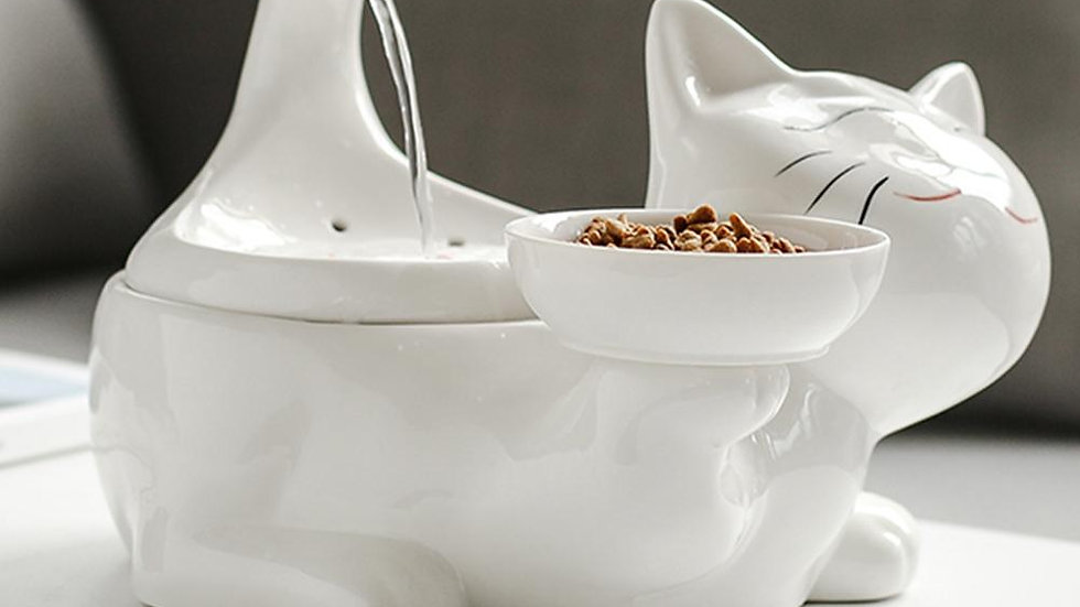Ceramic Cat Water Fountain and Dish