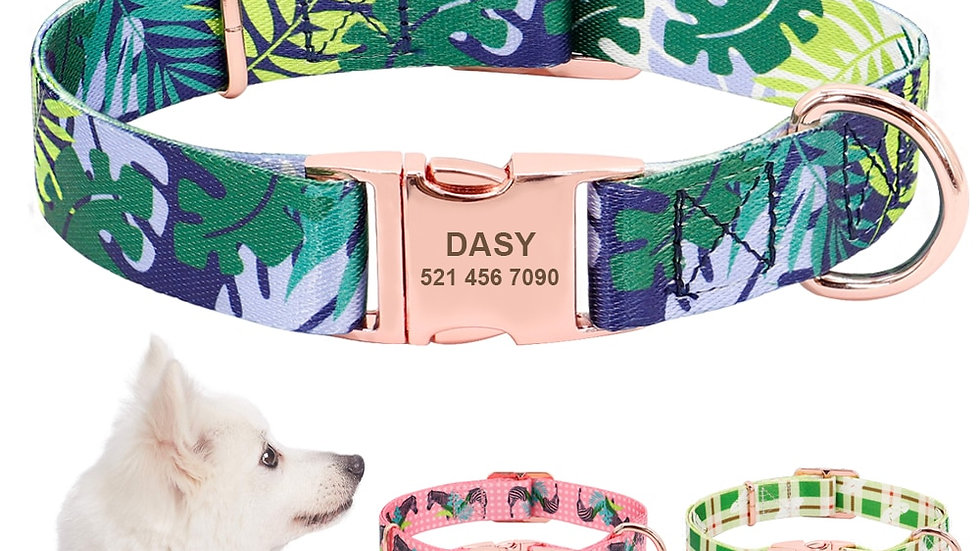 Personalised Dog Collar for All Size Dogs