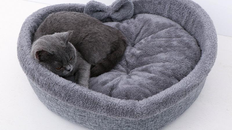 Pet Heart-Shaped Bed