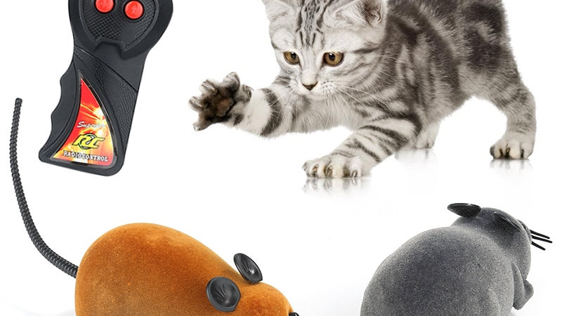 Wireless Remote Control Mouse for Cats