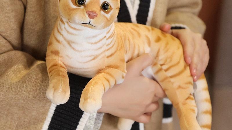Plush Cat Toys