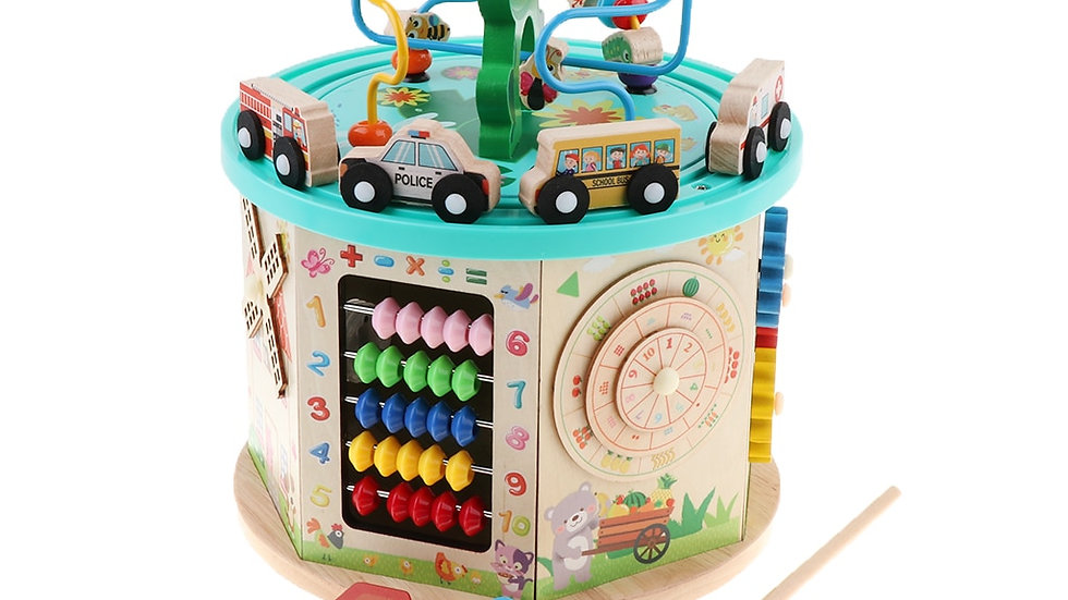 Educational Wooden Activity Cube