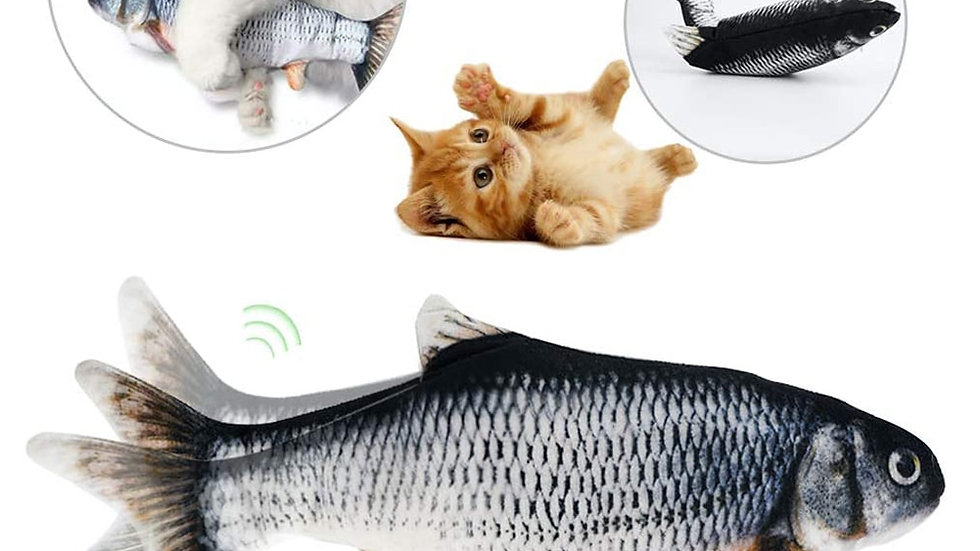 Interactive Fish Toy for Cats
