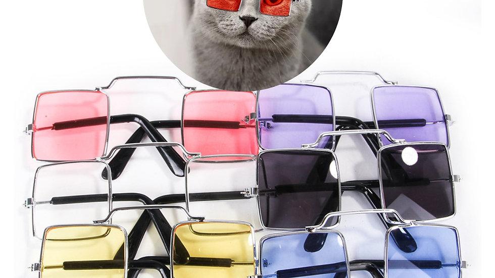 Cute Kitty Glasses