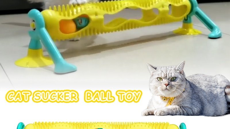 Cat Track Ball Toy