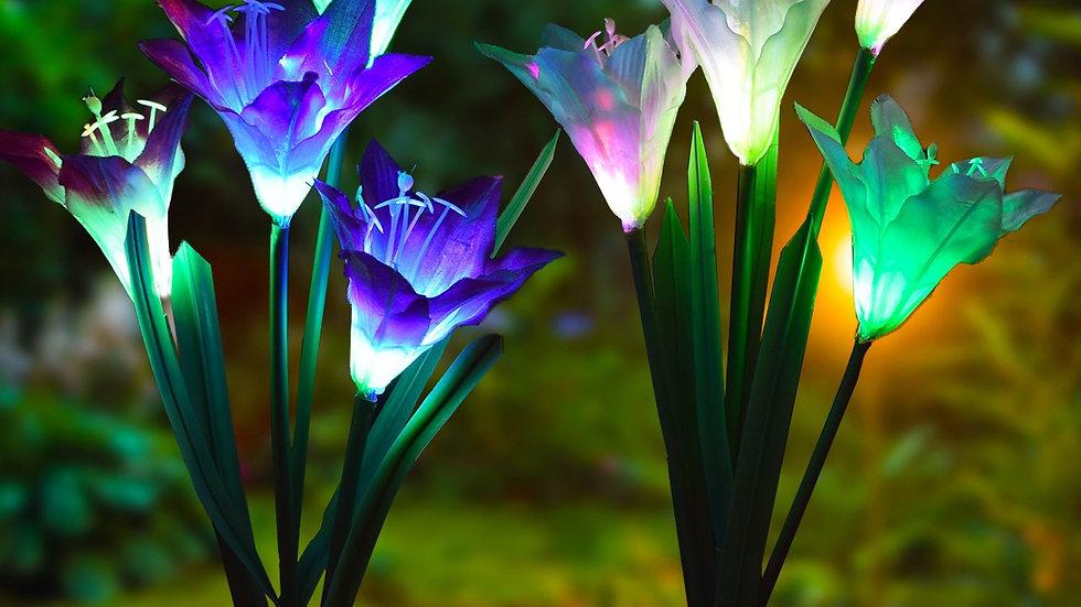 Light-up Flower Lanterns