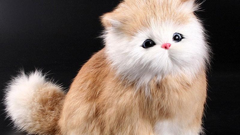 Plush Cat  Toy