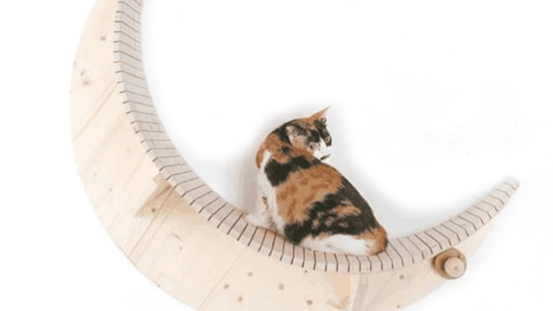 Wall Mounted Solid Wood Cat Jumping Platform