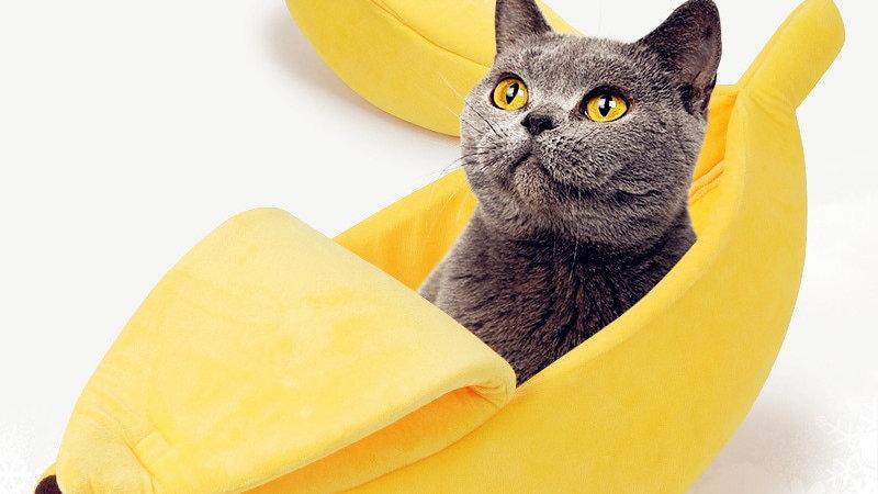 Banana Bed for Pets