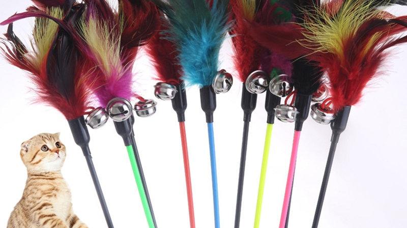 Random Colour Cat Feather Toy