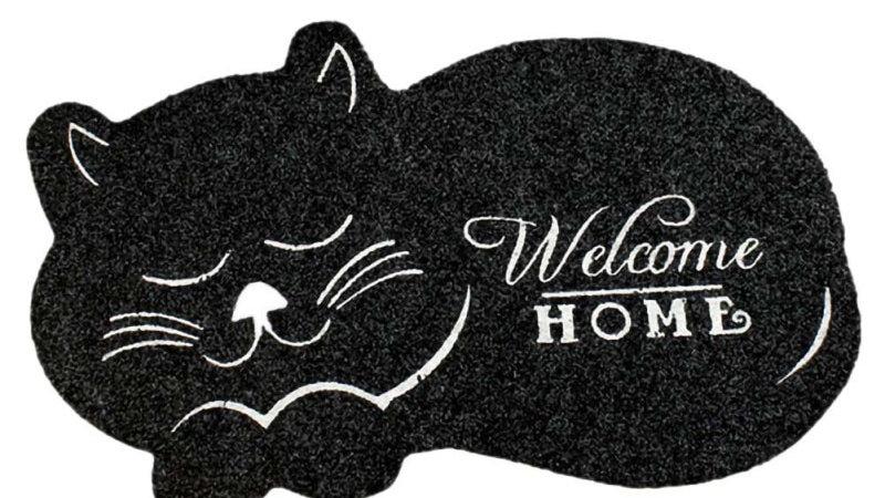 Anti-Slip Cat Door Mat