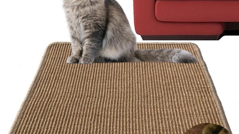 Sisal Cat Scratch Board