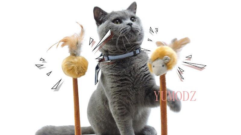 Cat Scratch Toy