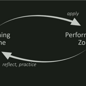 Learning Zone vs. Performance Zone