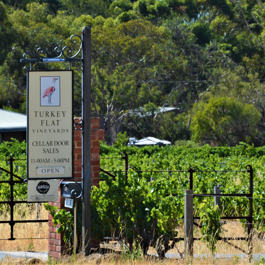Turkey Flat Vineyards