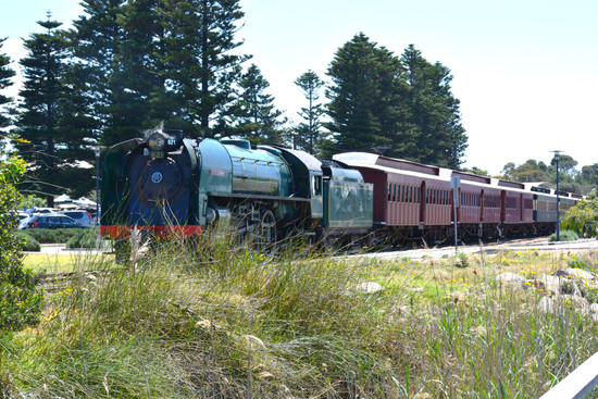 Step aboard the South Coast Wine Train in 2019