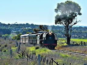 South Coast Wine Train tour