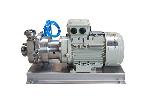 Hot Wort Pump