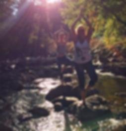 yogi_edited.png