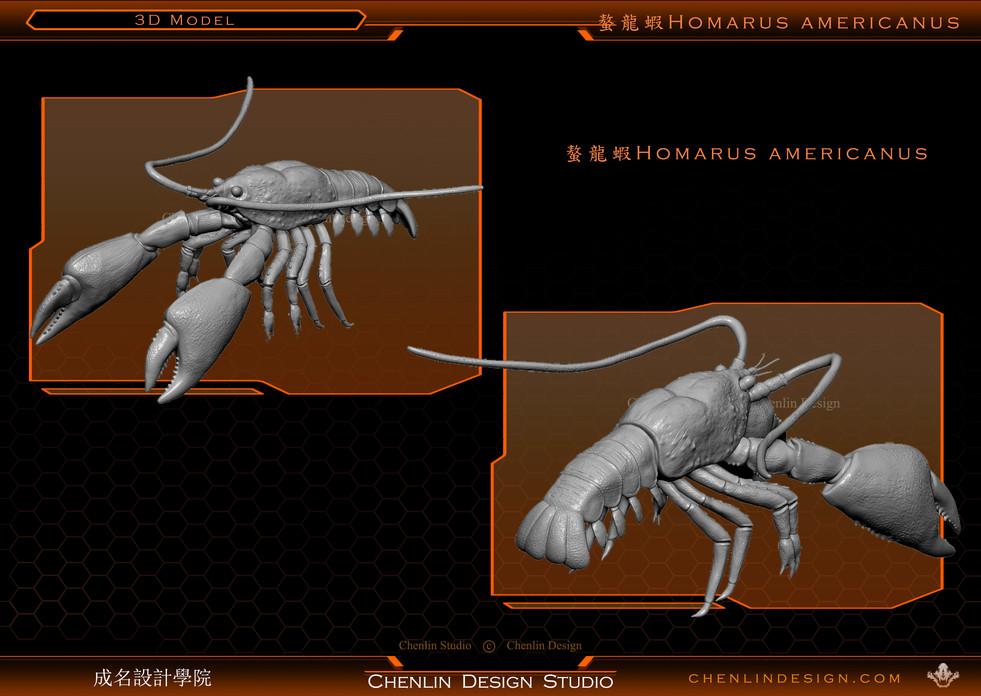 螯龍蝦1.jpg