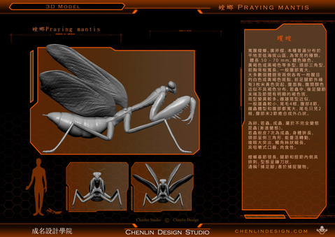 螳螂3-1.jpg