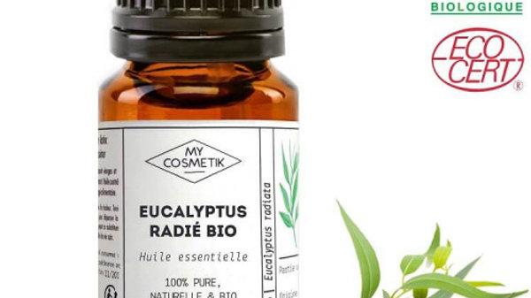 EUCALYPTUS RADIE 5ml HUILE ESSENTIELLE BIO