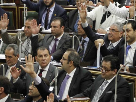 The Future of Egyptian Civil Society Under the New NGO Law - Situation Report