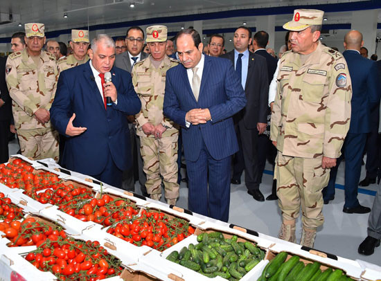 President Elsisi at NSPO projects
