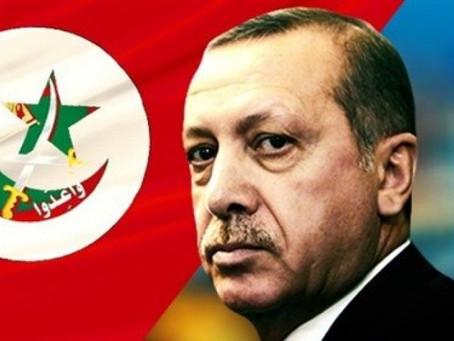 The Muslim Brotherhood Wrap Like a Snake around Erdogan's Neck