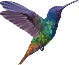 Geometric Hummingbird created using the pen tool and gradients in Adobe Illustrator