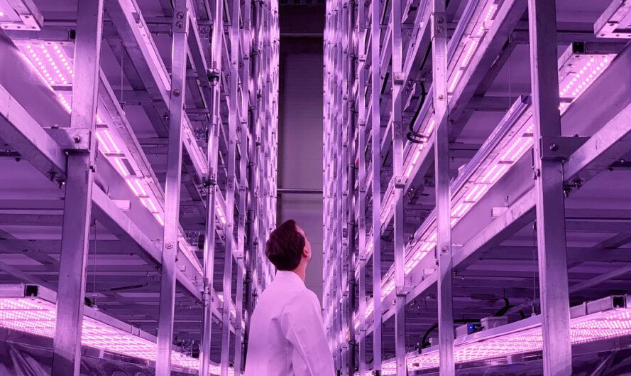 Construction of Europe's largest vertical farm is underway