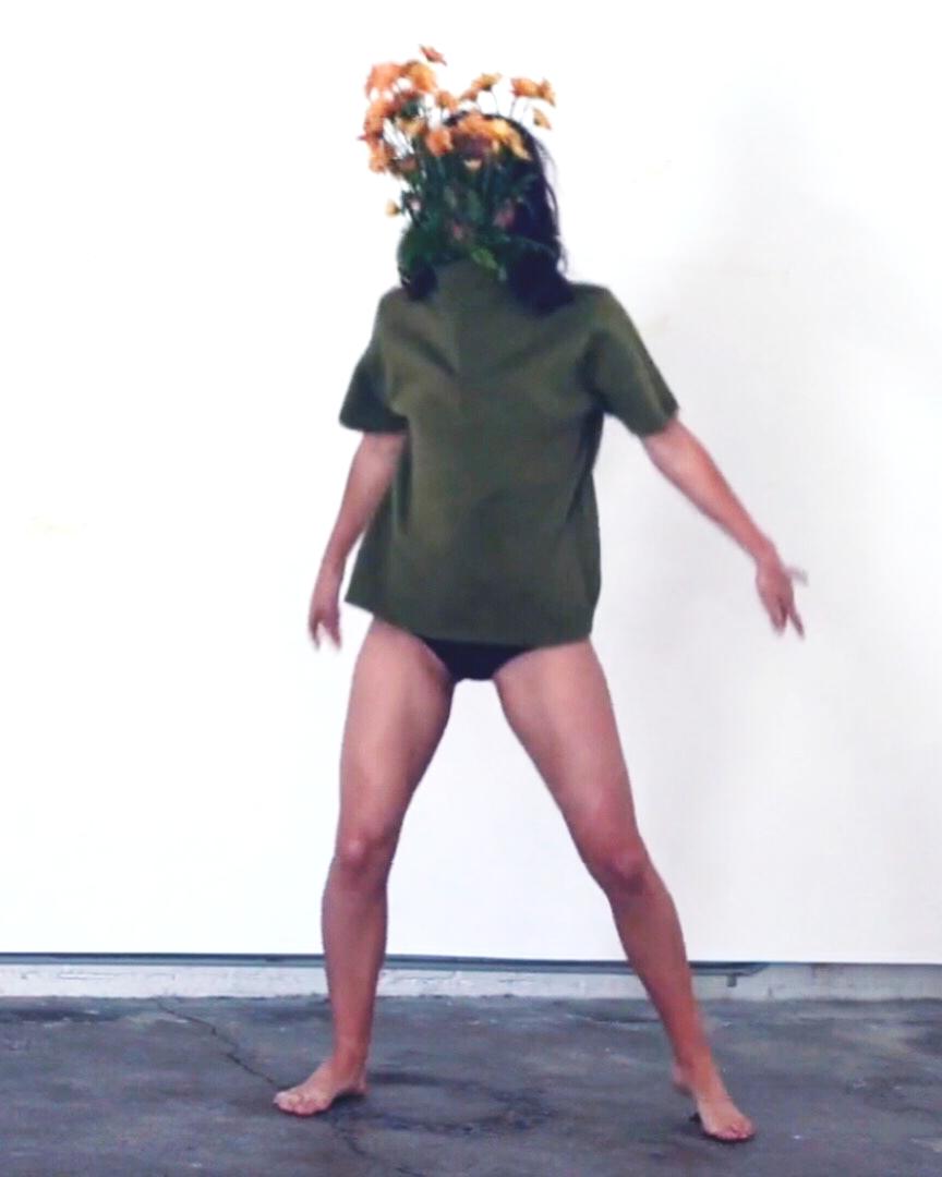 Flower heads photo video series