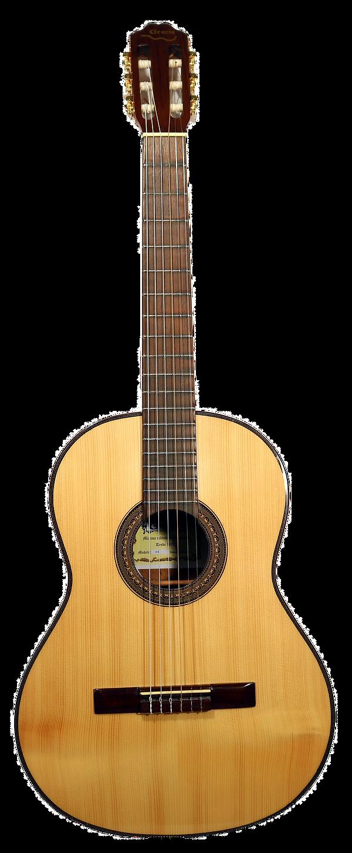 guitar-1904388_1920_edited.png